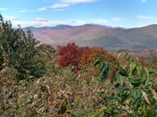 Beautiful colors in Mt Washington valley
