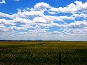Oklahoma Sky!