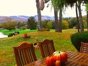 Fall in Glen