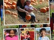6,000 FREE pumpkins for needy kids!
