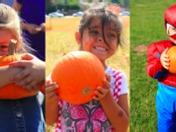 largest pumpkin give away!