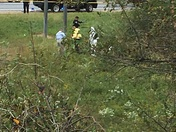 Police investigate body found on 85