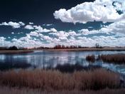 Prairie Slough