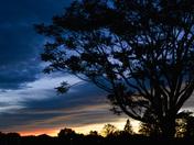 beautiful sky this evening