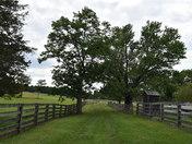 Appomattox National Battlefield