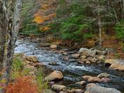 Fall colors in N. H.
