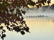 FPU's Women's Rowing Team Sunrise Practice