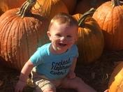 Pumpkin patch at Dudas Farm