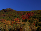 Foliage at the Bald Knob on the Moultonborough line.