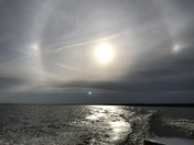 Halos and Sun Dogs