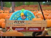 Alexa's 1st Halloween