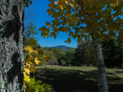 New Hampshire fall