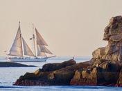 Morning Fall Sail