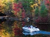 The Foliage Boat