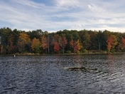Nashua River Fall