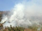 Woodstock fire