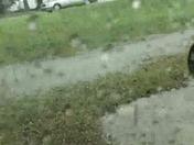Rain in Greer