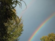 Rainbow in the Allegheny River