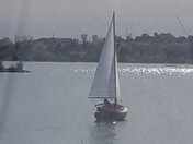 Sailing away! After the winds on warm fall day.