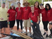 Bank of America Employees Volunteer with Loggerhead Marinelife Center