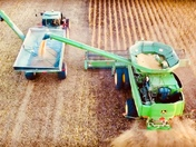 Guthrie County Farming