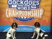 Keystone Docdogs