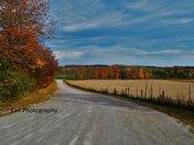 Orillia Fall Colours