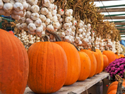 Market Halloween!