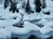 6b. Cold plunge, hot plunge