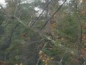 Oct 30 storm
