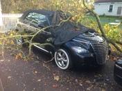Wind damage in Essex Junction