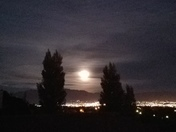 Goodnight Mr. Moon!