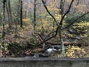 Beautiful fall colors at Stone Mountain
