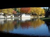 Fall on Gene Leahy Mall