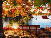 Walnut Creek in the Fall