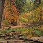 Tonto National Forest/ Horton Creek Trail