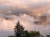 Misty morning fog on Alton Bay 11/9/17