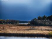 Otonabee Wetlands