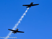WW11 Warbirds.........Veterans Day