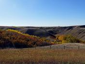 Prairie Coulee
