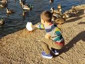 I'm nice and full so time to feed the ducks!