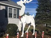 Giant reindeer
