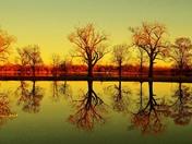 Lake manawa reflections