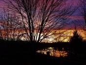 November Monday Morning Sunrise