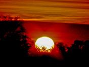 PROGRESSIVE AUTUMN SUNSET
