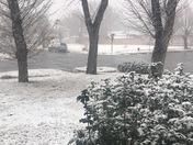 Snow falling in Las Vegas