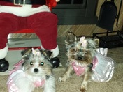 Roxie and Lexi