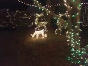 Elmo's Christmas Light Display