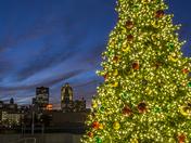 Christmas tree at Brenton Skating Plaza
