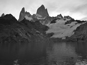 Patagonian Majesty